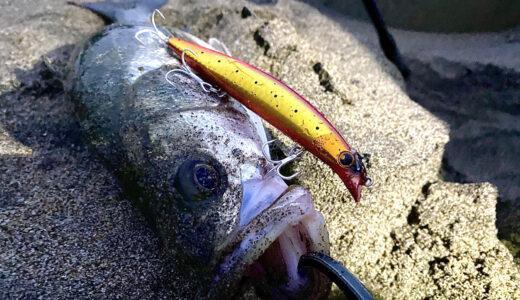 SHIMANO熱砂スピンブリーズ140Sフラッシュブーストプレゼントキャンペーン|釣り人を救いたい(シバター風語り今回も無し)スピンブリーズ140SFBミノーで釣りたい編